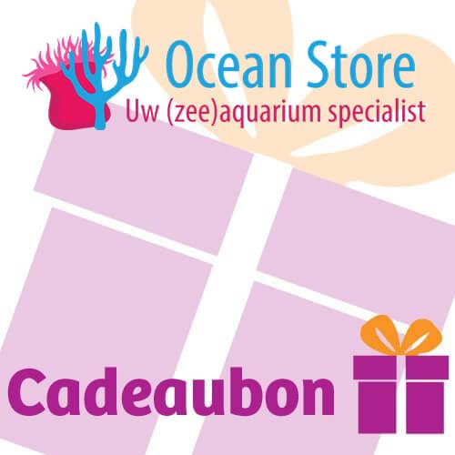 Ocean Store Gift voucher