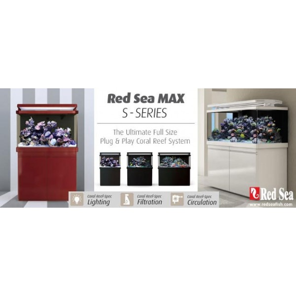 Red Sea Max S-Serie-12.jpg : -