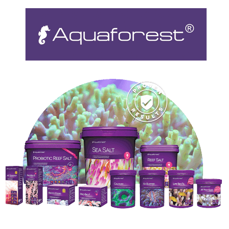 AquaForest water care
