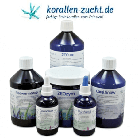 Korallen-Zucht water care