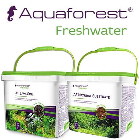 Aquaforest freshwater soil cover