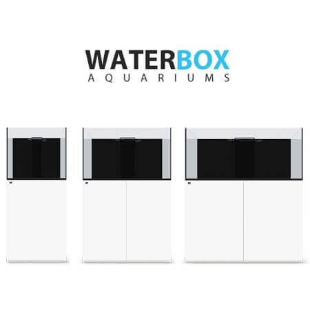 Waterbox reef-aquarium