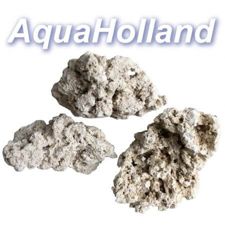AquaHolland Coralsea Reef Rock