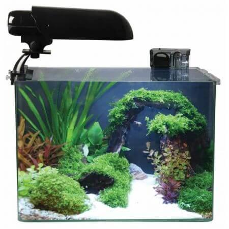 Aquarium COCOON 4 (15.5 L) 31x19x26H