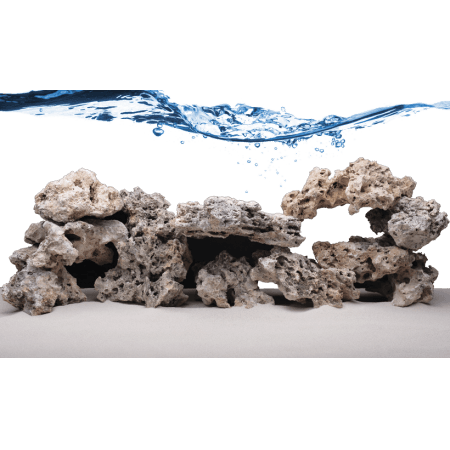 Fiji Skeleton Rock - round pieces of (dead) living stone
