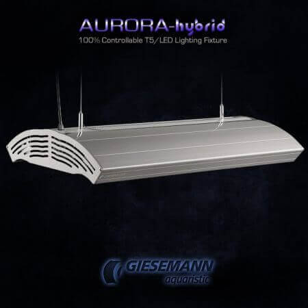 Giesemann AURORA HYBRID 4 x 80 Watt + 4 x 85W LED - 1500 mm Polar White