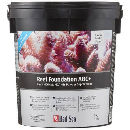 Red Sea Reef Foundation ABC+