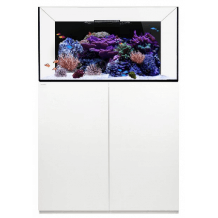 Waterbox Platinum Reef 100.3